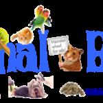 Animal-Bank-Logo-Full-Images-Blue1-500x162